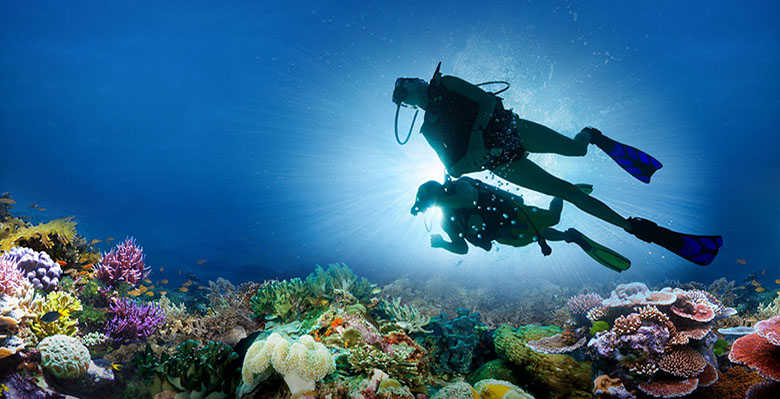 diving image 1